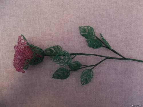 как сделать брошь из бисера tutorial. схема плетения ящерицы из...  Орхидея как сплести из бисера. зимняя береза из...